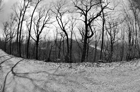 sightsee: Rural mountain road overlooking a lake in black and white with fisheye lens  Stock Photo