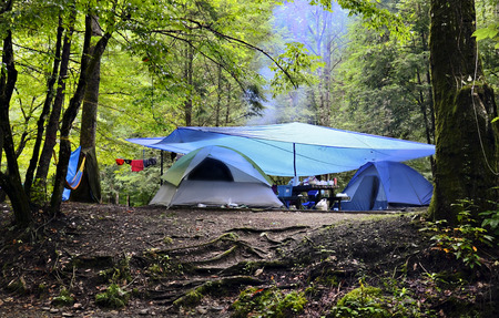 Camping site in the woods on a rainy day  Imagens