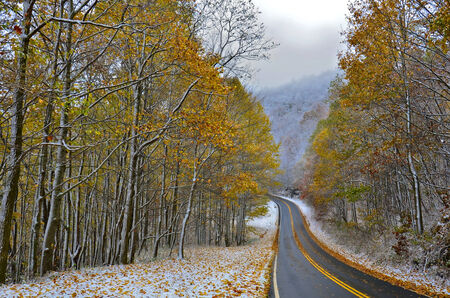 sightsee: A mountian road with snow and beautiful colorful trees of fall.