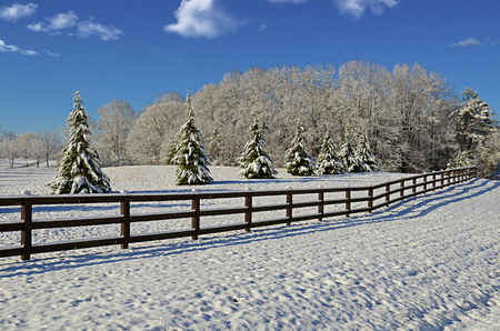 Beautiful pasture land covered with the first snow of the season.