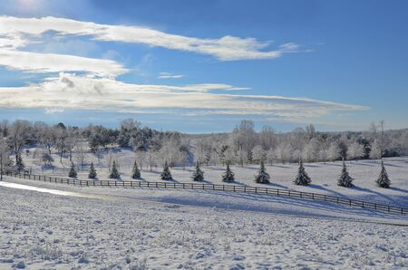 A pasture covered with a fresh winter snow. Stock Photo