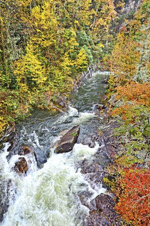 Swiftly Flowing River in Fall Zdjęcie Seryjne
