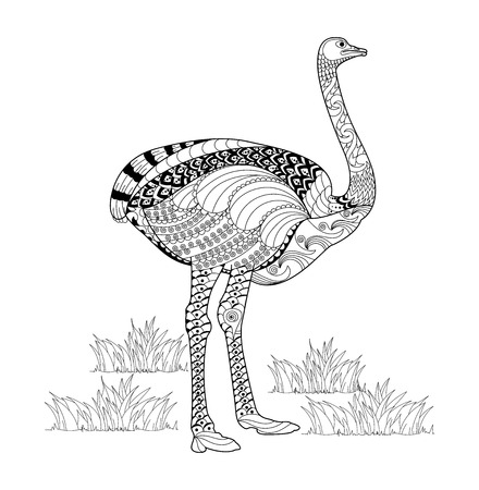 Ostrich adult coloring book. Zen-tangle hand drawn.vector illustration. Ilustração