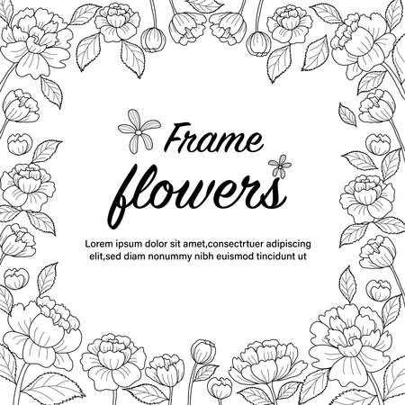 Pheony botanical drawning. Frame flowers. Coloring book page for adult. Vector illustration. Hand drawn. Vektorové ilustrace