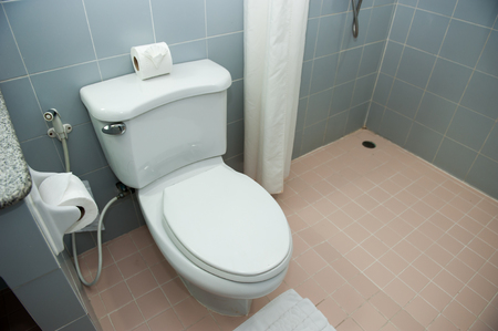 Bathroom clean and fresh,with flush toilet And tissues. Stock Photo