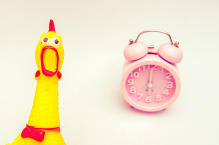 Chicken dolls are shocked, when morning comes to work. Stock Photo