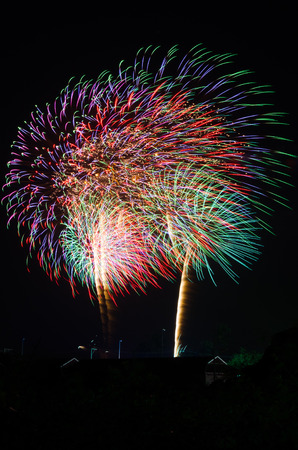 An image of exploding fireworks at night  Represents a celebration