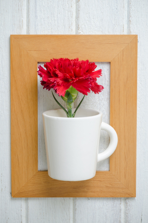 red  carnation: art of red Carnation flower in wooden frame on white wooden  background Stock Photo