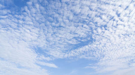 cloud scape: Cloud scape background beauty and natural