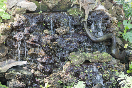 water fall in garden photo