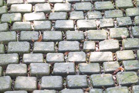 Green brick pathway in garden Stock Photo