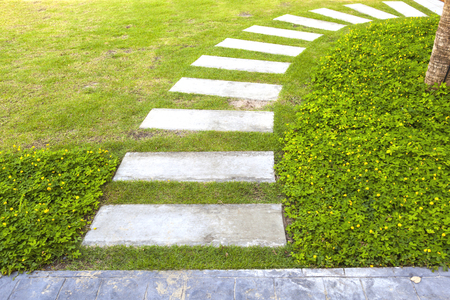 curve path in the garden on green grass background 免版税图像
