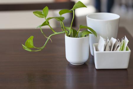Café arriba, paquetes de azúcar en la mesa del desayuno con la planta verde Foto de archivo - 47340527
