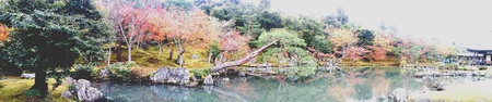 vintage landscape: Tenryuji garden Stock Photo