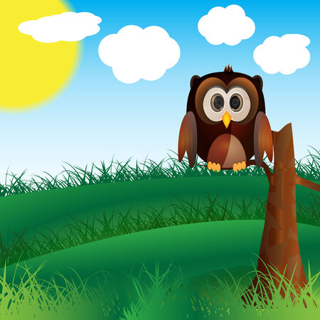 cute brown owl hold on tree in wild nature