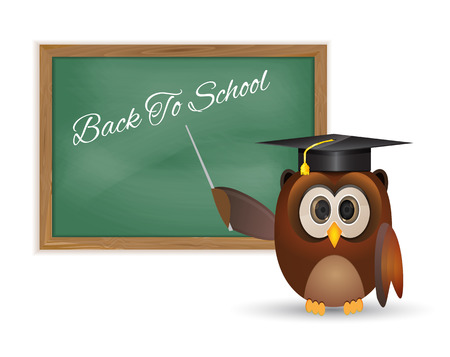 Owl and board with back to school thematic  Illustration