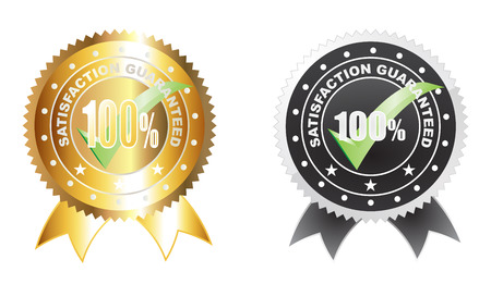 100 percent guarantee with checklist icon avaiable with two colour