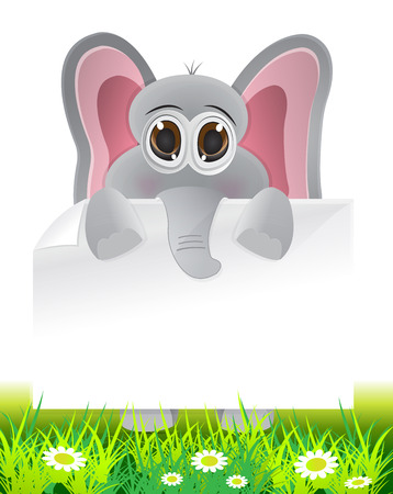 illustration elephant holding text paper on field with grass and white background