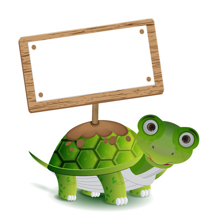 green day baby blue background: turtle and text board for your text above it shell