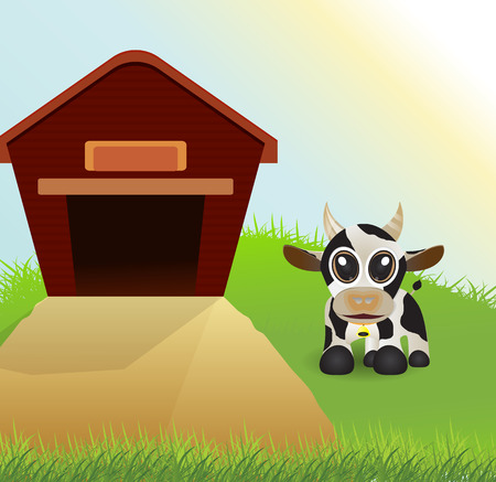 front or back yard: cute cow on grass field and barn as background Illustration