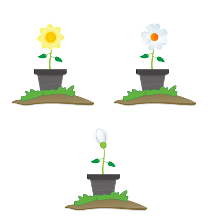 blossom flower illustration in the pot isolated Illustration