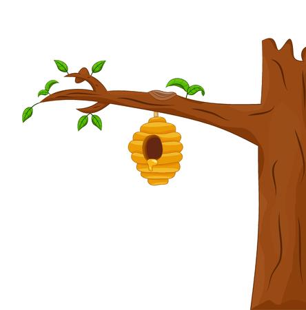 꿀벌 하이브 고립 된 나무에 매달려