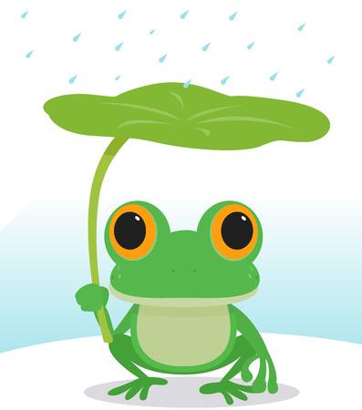 grenouille: Grenouille mignon sous la pluie Illustration