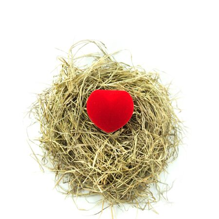 february 1: Red ring box in nest Stock Photo