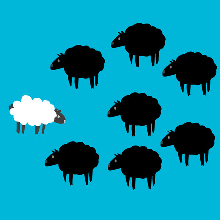 correlate: Black and white sheep on blue screen