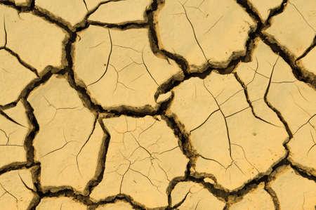 Dry mud photo