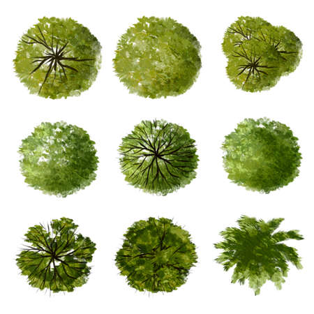 Collection of abstract watercolor green tree top view isolated on white background for landscape plan and architecture layout drawing, elements for environment and garden.