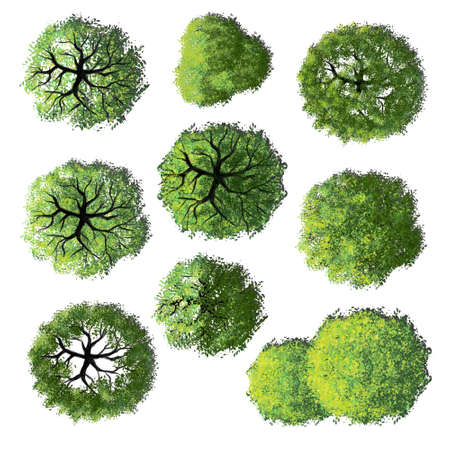 Collection of abstract watercolor green tree top view isolated on white background for landscape plan and architecture layout drawing, elements for environment and garden. Standard-Bild