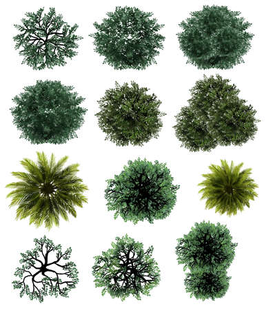 Collection of abstract watercolor green tree top view isolated on white background for landscape plan and architecture layout drawing, elements for environment and garden. Stock Photo
