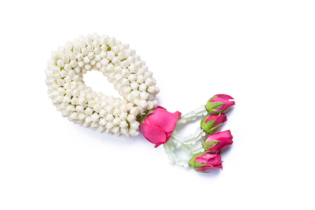 Jasmine garland with pink roses on white background.