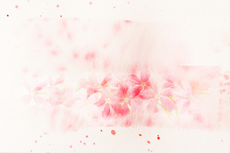 Abstract watercolor illustration of blossom pink flower (Rangoon creeper). Watercolor painting on paper. Floral watercolor illustration. illustration