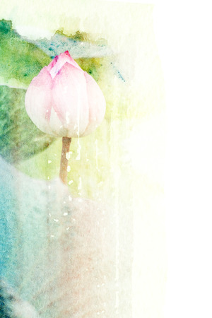 Abstract watercolor illustration of blossom lotus flower. Watercolor painting on paper. Floral watercolor illustration.