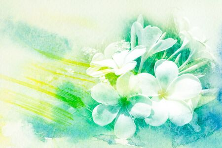 Watercolor illustration of blossom plumeria flower painted on paper Standard-Bild
