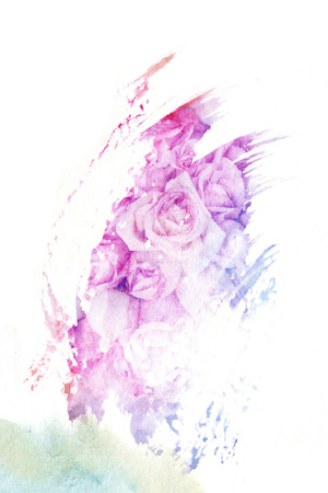 roses  petals: Abstract watercolor illustration of blossom rose flower. Watercolor painting on paper. Floral watercolor illustration.