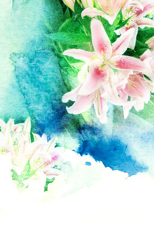 lilly: Abstract watercolor illustration of blossom lilly flower. Watercolor painting on paper. Floral watercolor illustration.
