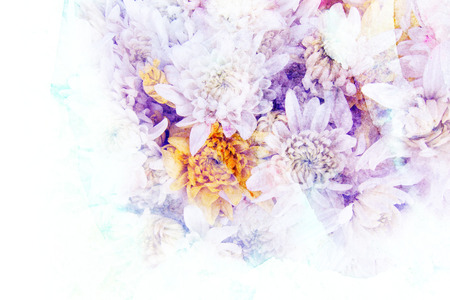 watercolor paper: Abstract watercolor illustration of blossom chrysanthemum flower. Watercolor painting on paper. Floral watercolor illustration. Stock Photo