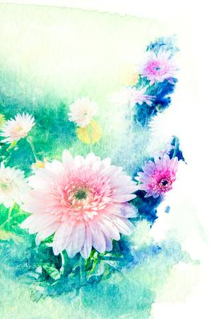 gerbera: Abstract watercolor illustration of blossom gerbera. Watercolor painting on paper. Floral watercolor illustration.