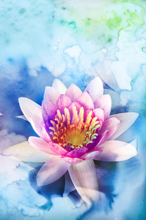 Abstract watercolor illustration of blossom lotus. Watercolor painting. Floral watercolor illustration. Standard-Bild