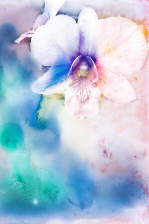 blue orchid: Abstract watercolor illustration of blossom phalaenopsis orchid. Watercolor painting. Floral watercolor illustration.