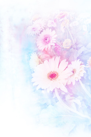 gerbera: Abstract watercolor illustration of blossom gerbera. Watercolor painting. Floral watercolor illustration.