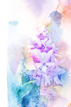purple wreath: Watercolor painting on paper with illustration of blossom purple wreath flower. Artistic floral abstract background.