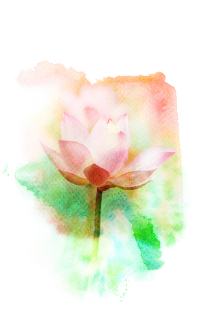 Watercolor painting illustration of blossom pink lotus. Artistic floral abstract background. Imagens