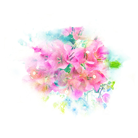 Watercolor painting illustration of blossom flower. Artistic floral abstract background. Stock Photo