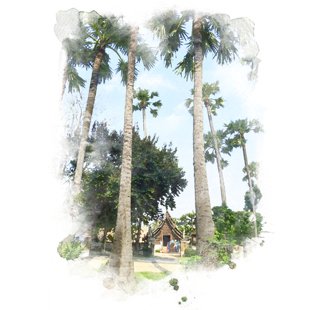 寺 (公共の場)、背景に青い空で木製の聖域と砂糖やし。水彩画 (レタッチ)。