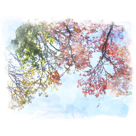 Colorful leaf with blue sky background. Watercolor painting (retouch).