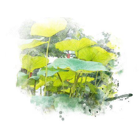 Artistic lotus leaf abstract background. Watercolor painting (retouch).